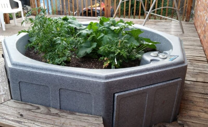 hot tub repurposed into a flower pot